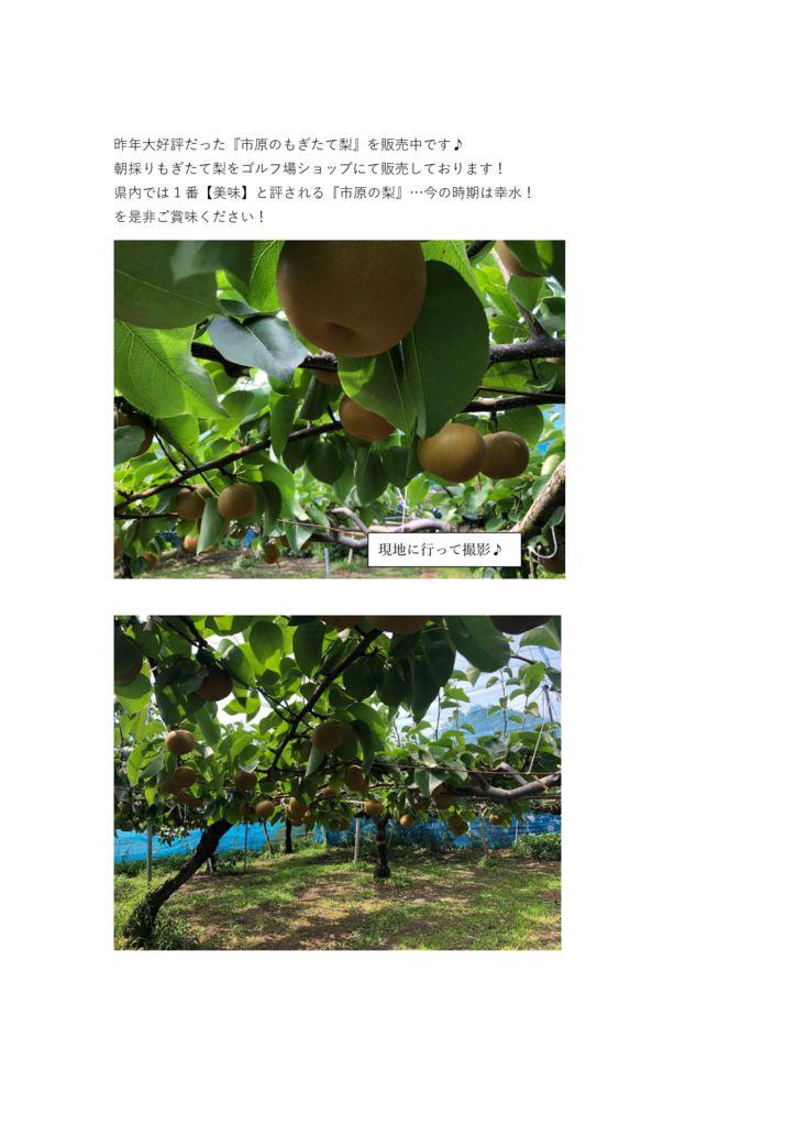 HP掲載 梨の原稿のサムネイル